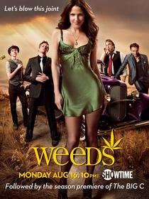 Weeds (6ª Temporada) - Poster / Capa / Cartaz - Oficial 1