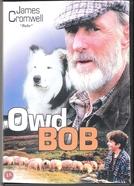 A Competição (Owd Bob)