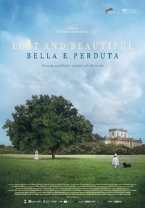 Lost and beautiful - Poster / Capa / Cartaz - Oficial 1