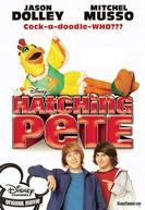 Um Mascote Chocante (Hatching Pete)
