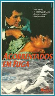 Acorrentados em Fuga - Poster / Capa / Cartaz - Oficial 1