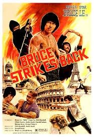 The Ninja Strikes Back - Poster / Capa / Cartaz - Oficial 1