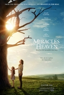 Milagres do Paraíso (Miracles from Heaven)