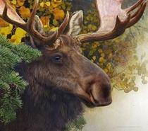 Moose - Poster / Capa / Cartaz - Oficial 1