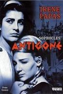 Antígona (Antigoni)