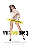 Depois que o Pornô Acaba 2 (After Porn Ends 3)