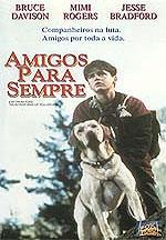 Amigos Para Sempre - Poster / Capa / Cartaz - Oficial 3
