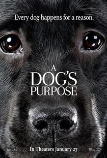 Quatro Vidas de Um Cachorro - Poster / Capa / Cartaz - Oficial 5