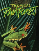 Tropical Rainforest (Tropical Rainforest)