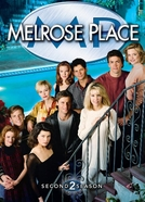 Melrose Place (2ª Temporada) (Melrose Place Season 2)