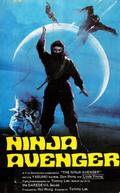 The Ninja Avenger (Fei Yan Zou Bi)