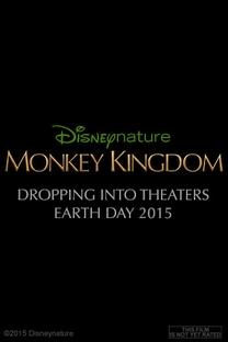 O Reino dos Primatas - Poster / Capa / Cartaz - Oficial 4
