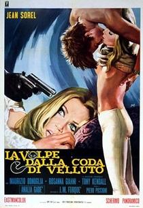 A Raposa do Rabo de Veludo - Poster / Capa / Cartaz - Oficial 2