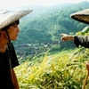 Carteiros nas Montanhas, 1999