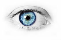 O Olho do Furacão - Poster / Capa / Cartaz - Oficial 1