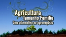 Agricultura Tamanho Família (Agricultura Tamanho Família)