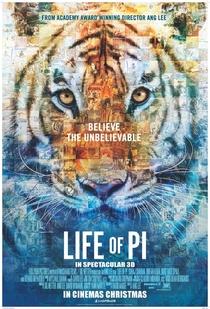 As Aventuras de Pi - Poster / Capa / Cartaz - Oficial 5