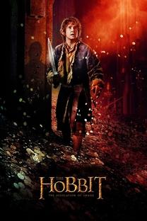 O Hobbit: A Desolação de Smaug - Poster / Capa / Cartaz - Oficial 14
