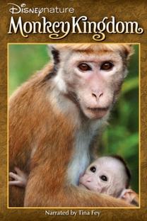 O Reino dos Primatas - Poster / Capa / Cartaz - Oficial 5