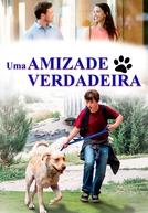 Uma Amizade Verdadeira (Marshall The Miracle Dog)