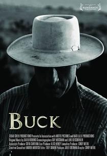 Buck, O Encantador de Cavalos - Poster / Capa / Cartaz - Oficial 2