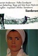 Lianbron (Lianbron)