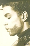 Prince: The Hits Collection (Prince: The Hits Collection)