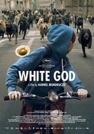 Deus Branco (Fehér isten)