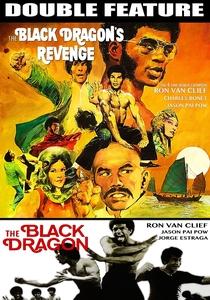 O Dragão Negro vinga a morte de Bruce Lee - Poster / Capa / Cartaz - Oficial 1
