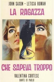 A Garota Que Sabia Demais - Poster / Capa / Cartaz - Oficial 6