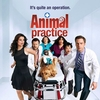 Série de comédia Animal Practice é cancelada – Pipoca Moderna