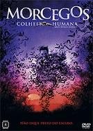 Morcegos - Colheita Humana (Bats: Human Harvest)