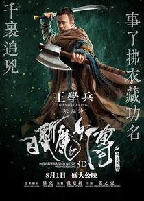 A Bruxa do Cabelo Branco do Reino Lunar - Poster / Capa / Cartaz - Oficial 9
