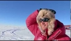 Harry's South Pole Heroes, Sunday at 8pm on ITV