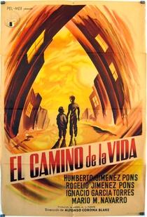 O Caminho da Vida  - Poster / Capa / Cartaz - Oficial 2