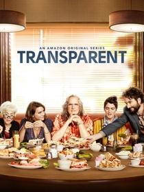 Transparent (2ª Temporada) - Poster / Capa / Cartaz - Oficial 1