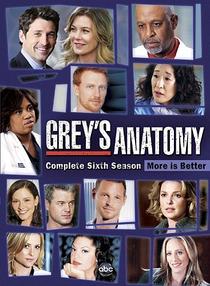 Grey's Anatomy (6ª Temporada) - Poster / Capa / Cartaz - Oficial 1