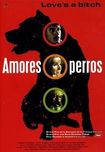Amores Brutos - Poster / Capa / Cartaz - Oficial 6