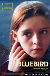 Pássaro Azul - Poster / Capa / Cartaz - Oficial 1