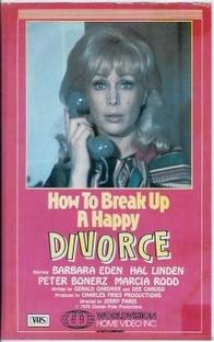 Como Romper um Divórcio Feliz - Poster / Capa / Cartaz - Oficial 1