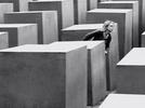 Labirinto (Labirinto)