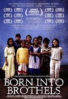 Nascidos em Bordéis (Born Into Brothels: Calcutta's Red Light Kids)