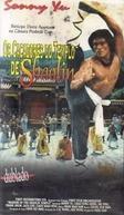 Os Cacadores do Templo de Shaolin (Shao Lin nian si liu ma)