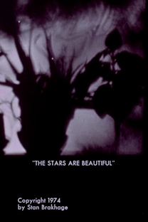The Stars Are Beautiful - Poster / Capa / Cartaz - Oficial 1