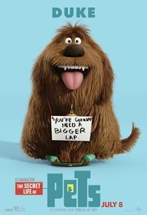 Pets: A Vida Secreta dos Bichos - Poster / Capa / Cartaz - Oficial 5