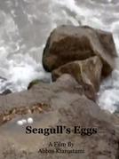 Seagull's Eggs (Seagull's Eggs)