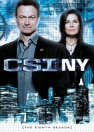 CSI: Nova York (8ª temporada) (CSI: New York (season 8))