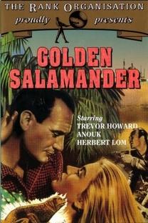 A Salamandra de Ouro - Poster / Capa / Cartaz - Oficial 1