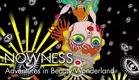 """""""Adventures in Beauty Wonderland"""" by Keiichi Tanaami"""