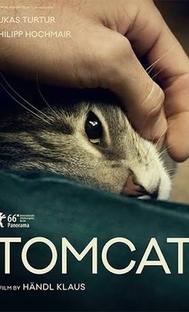 Tomcat - Poster / Capa / Cartaz - Oficial 2